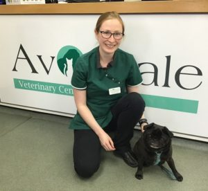 katie and bella at avonvale veterinary  surgery