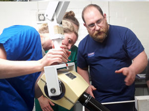 avonvale vets dentistry training