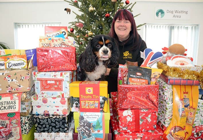 christmas-appeal-avonvets
