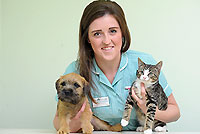 puppy kitten care sept16