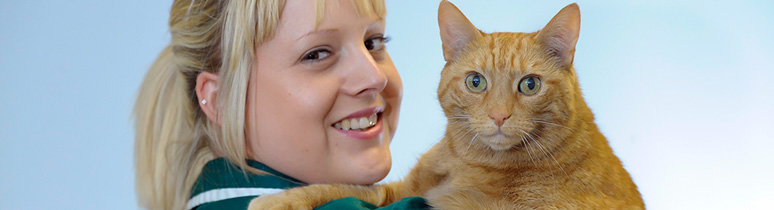 About Avonvale Veterinary Centres
