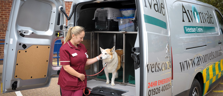 warwick animal ambulance